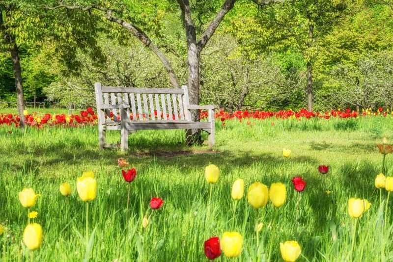 Garten im Alter verrenten
